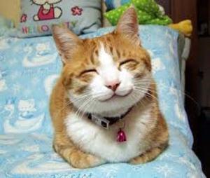 幸福な笑顔