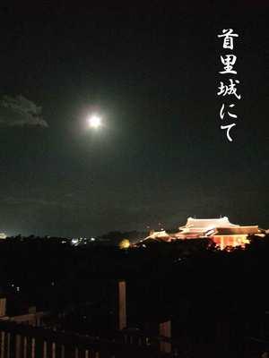 首里城の夜景です。