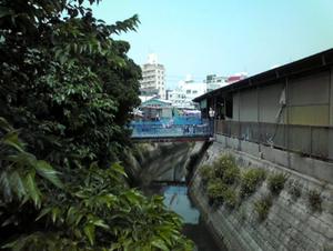 沖縄観光 農連市場